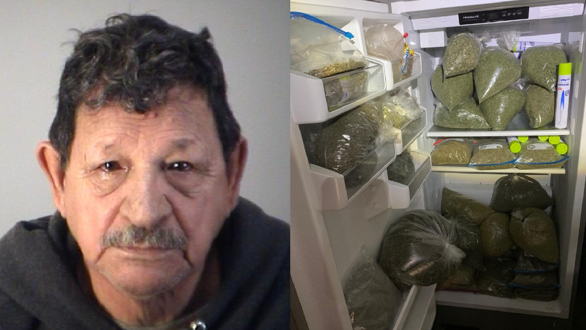 Detectives Make Largest Marijuana Bust In Lake County With Lake County Florida Spring Break