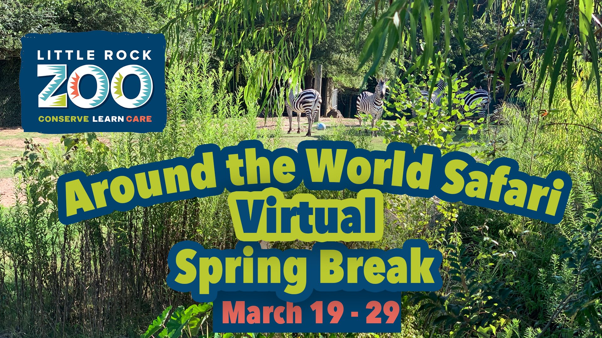 Experience An Around The World Safari Virtual Spring Break For When Is Spring Break 2020 In Pine Bluff