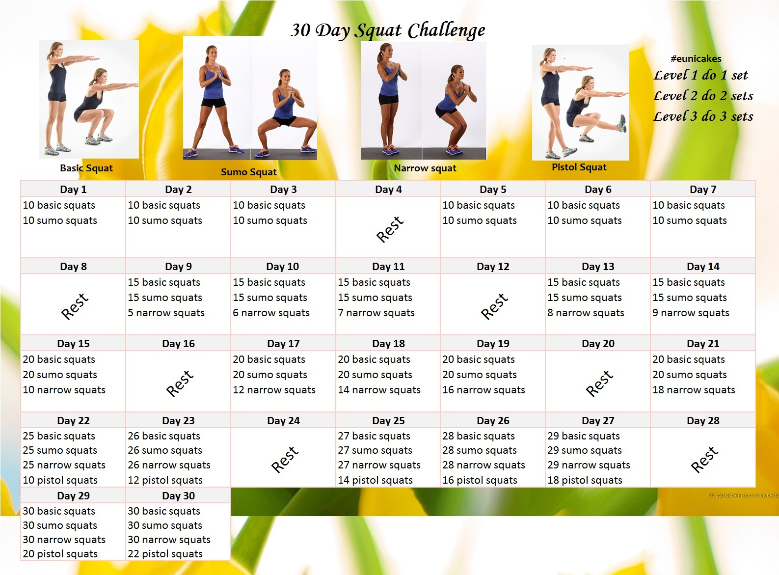 Fitness Challenge: 30 Day Squat Calendar Challenge | Eunicakes With 30 Day Squat Challenge Schedule Calendar
