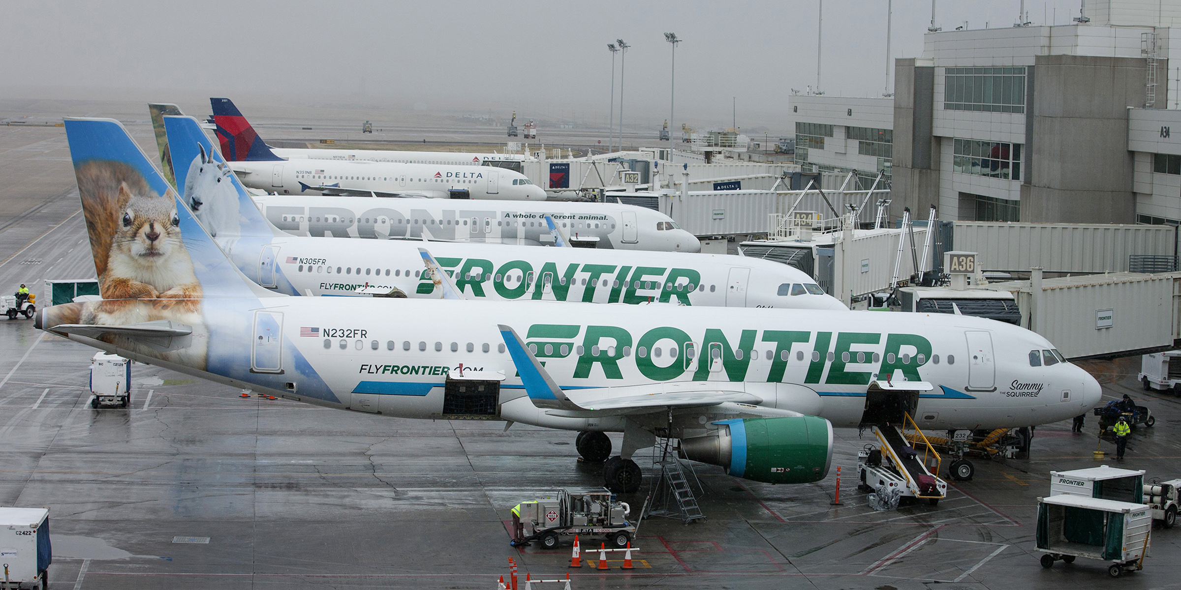 Frontier Airlines 'kids Fly Free' Promotion Extended Till With Frontier Airlines Monthly Calendar