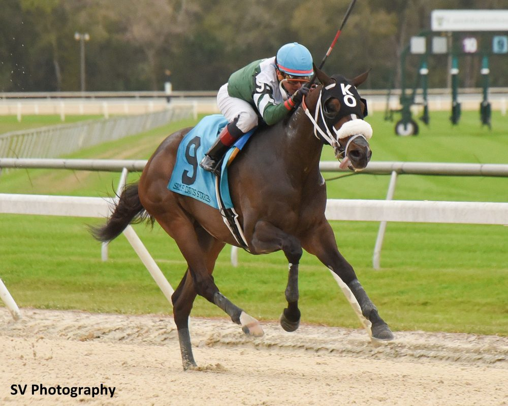 Hometown Favorite Well Defined Faces 10 In Tampa Bay Derby Pertaining To Tampa Downs Race Track Schedule