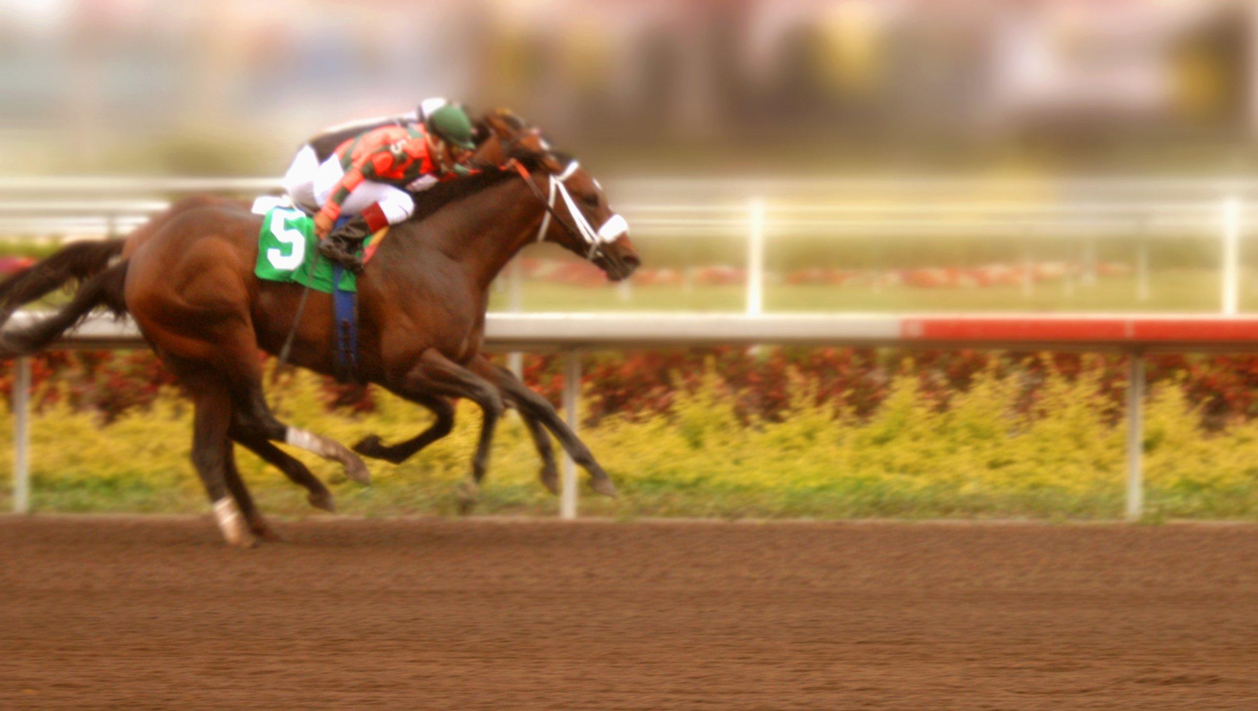Horse Racing Calendar: Must See Events In 2020 Regarding Santa Anita Racetrack 2020 Calendar