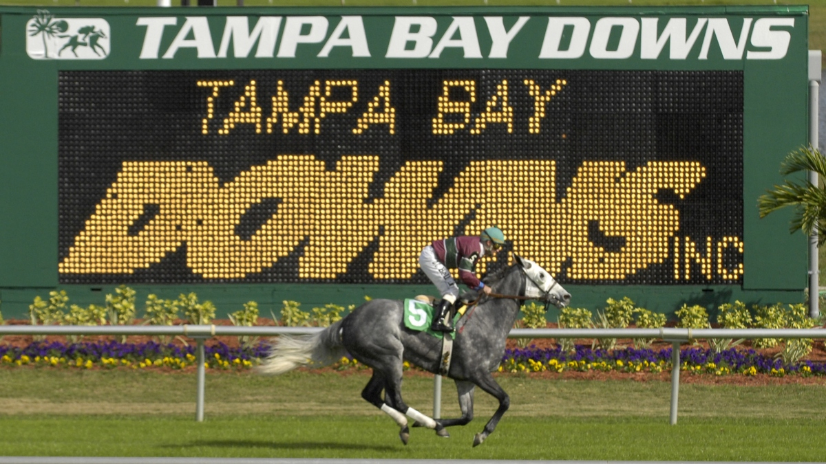 Horse Racing Picks For Wednesday, April 8: Best Value Bets In Tampa Downs Race Track Schedule