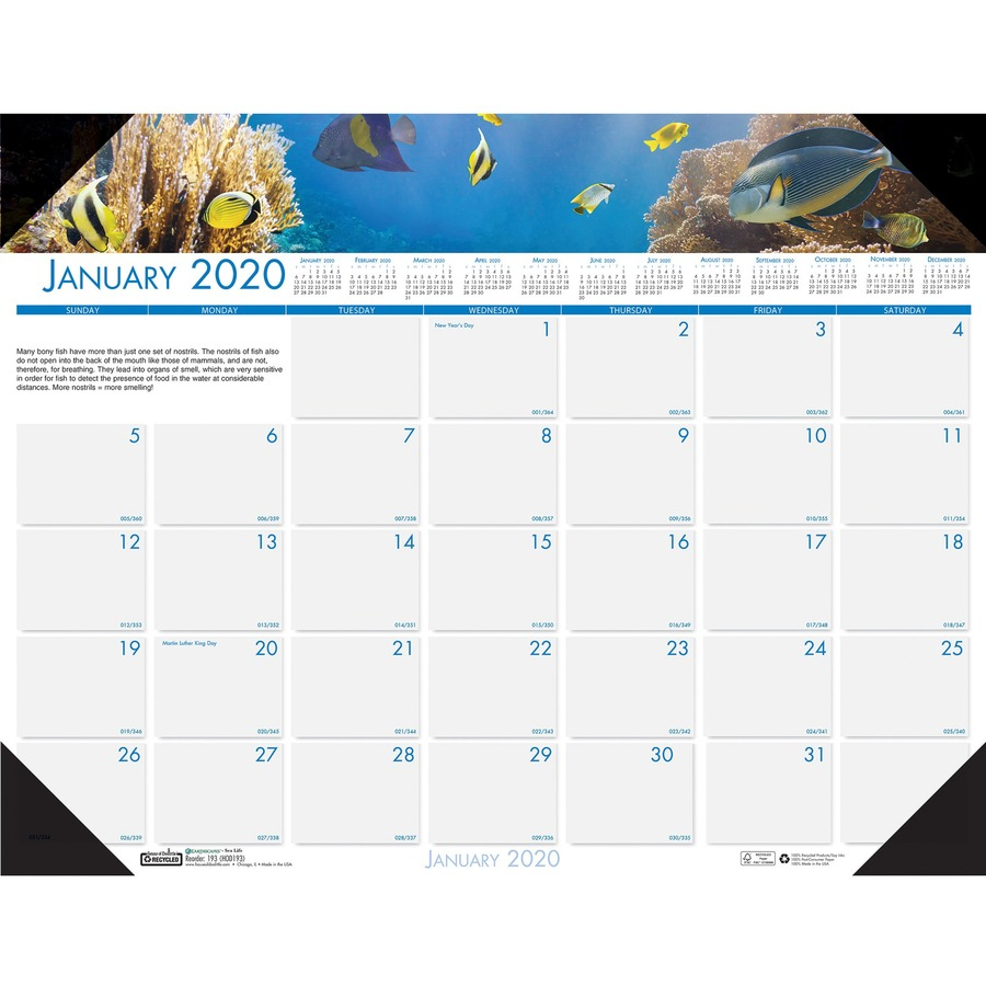 House Of Doolittle Earthscapes Sea Life Desk Pads - Yes Regarding Single Page 1999 Calendar