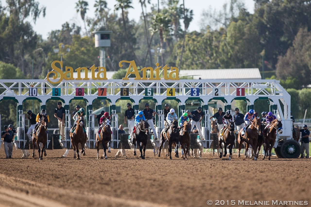 Racing Dates | Horse Racing Schedule | Live Horse Racing Throughout Tampa Bay Downs Stakes Schedule 2021