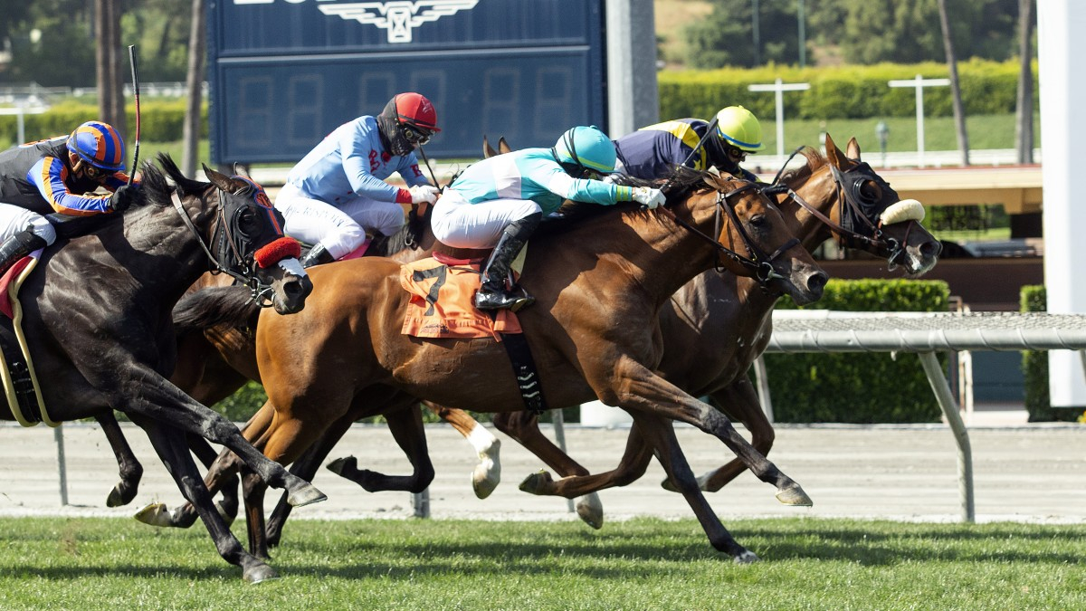 Santa Anita Results For Sunday, May 24 – The San Diego Union With Santa Anita Racetrack 2020 Calendar