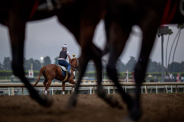 Santa Anita's Racing Season Closes With The Sport Of Kings With Regard To Santa Anita Racetrack 2020 Calendar