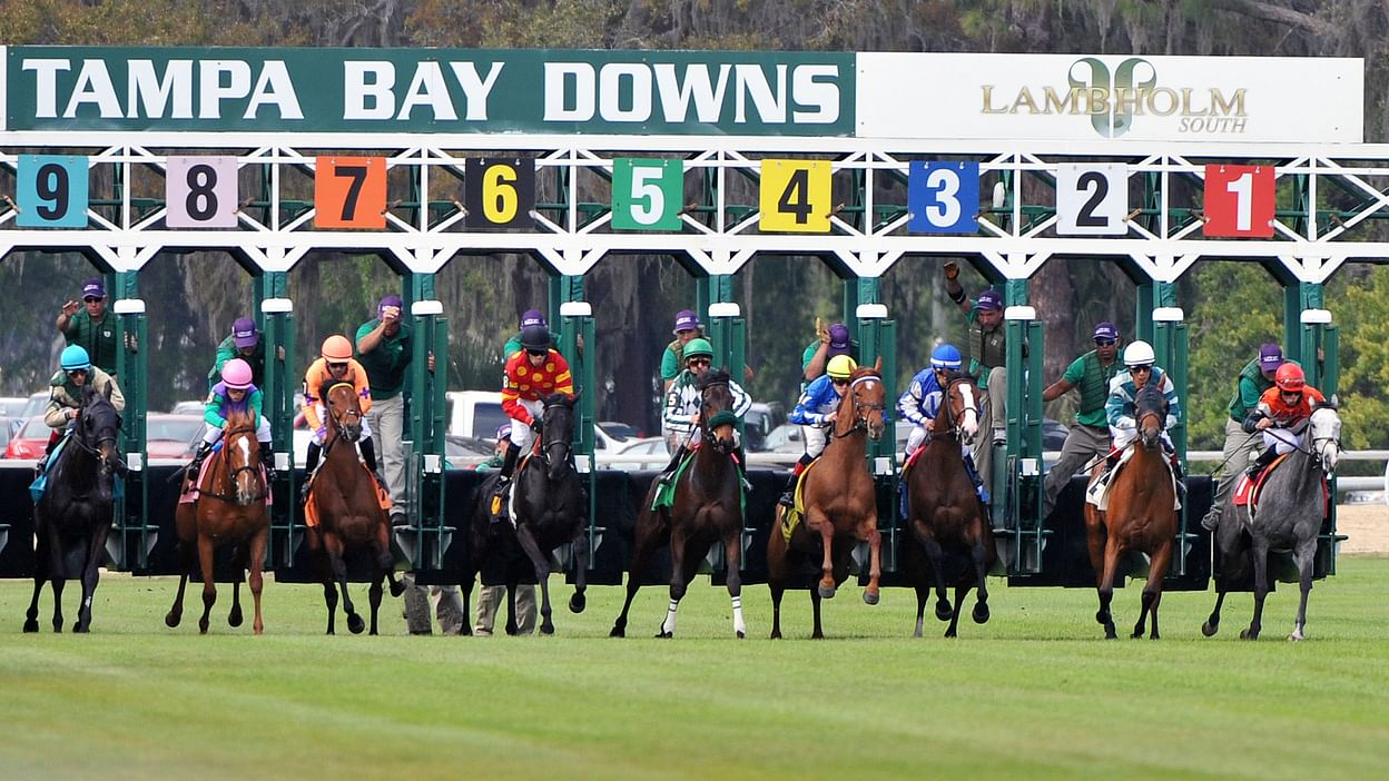 Tampa Bay Follows Fonner In Extending Meet Through May Throughout Tampa Downs Race Track Schedule