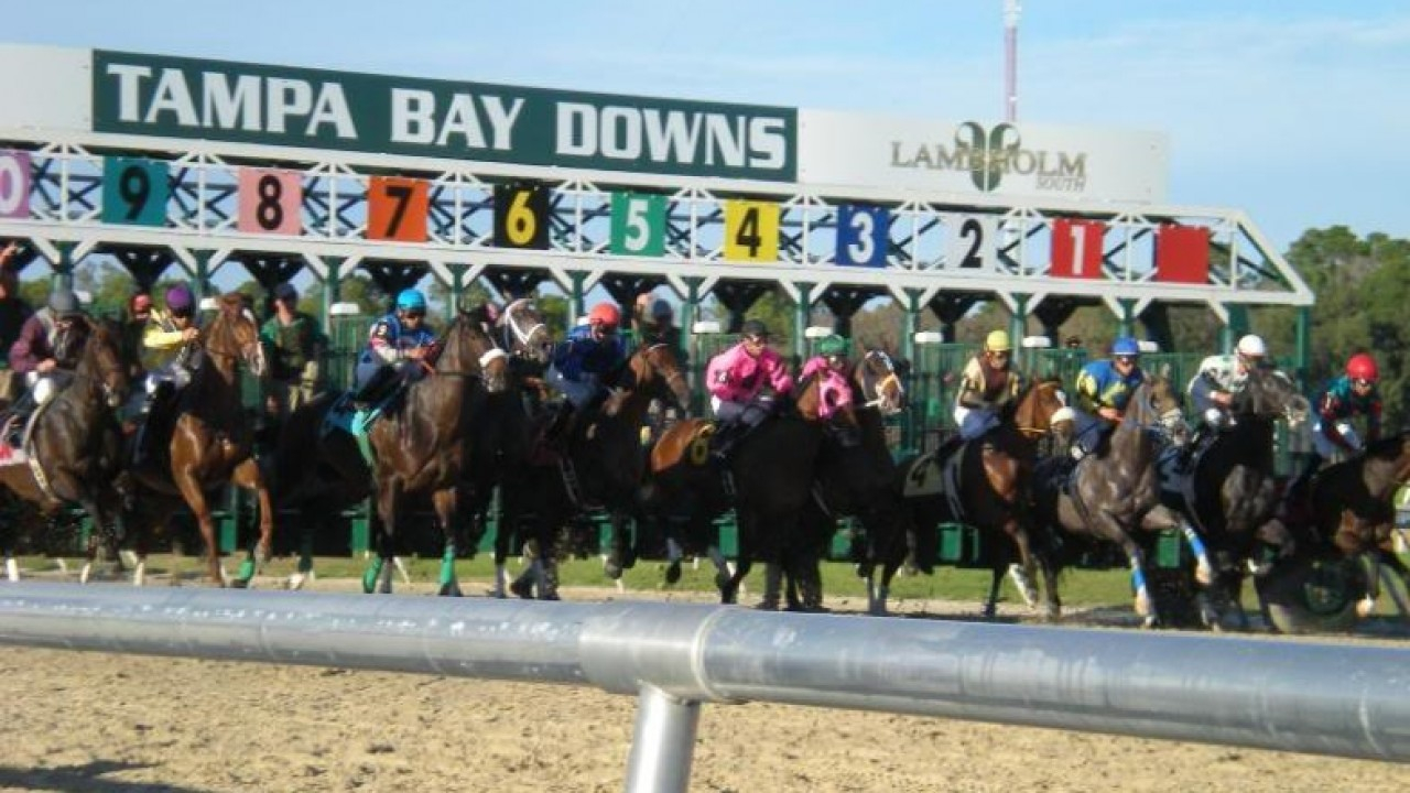 Boost For Trainers As Tampa Bay Downs Allowed To Keep Racing In Tampa Downs Race Dates