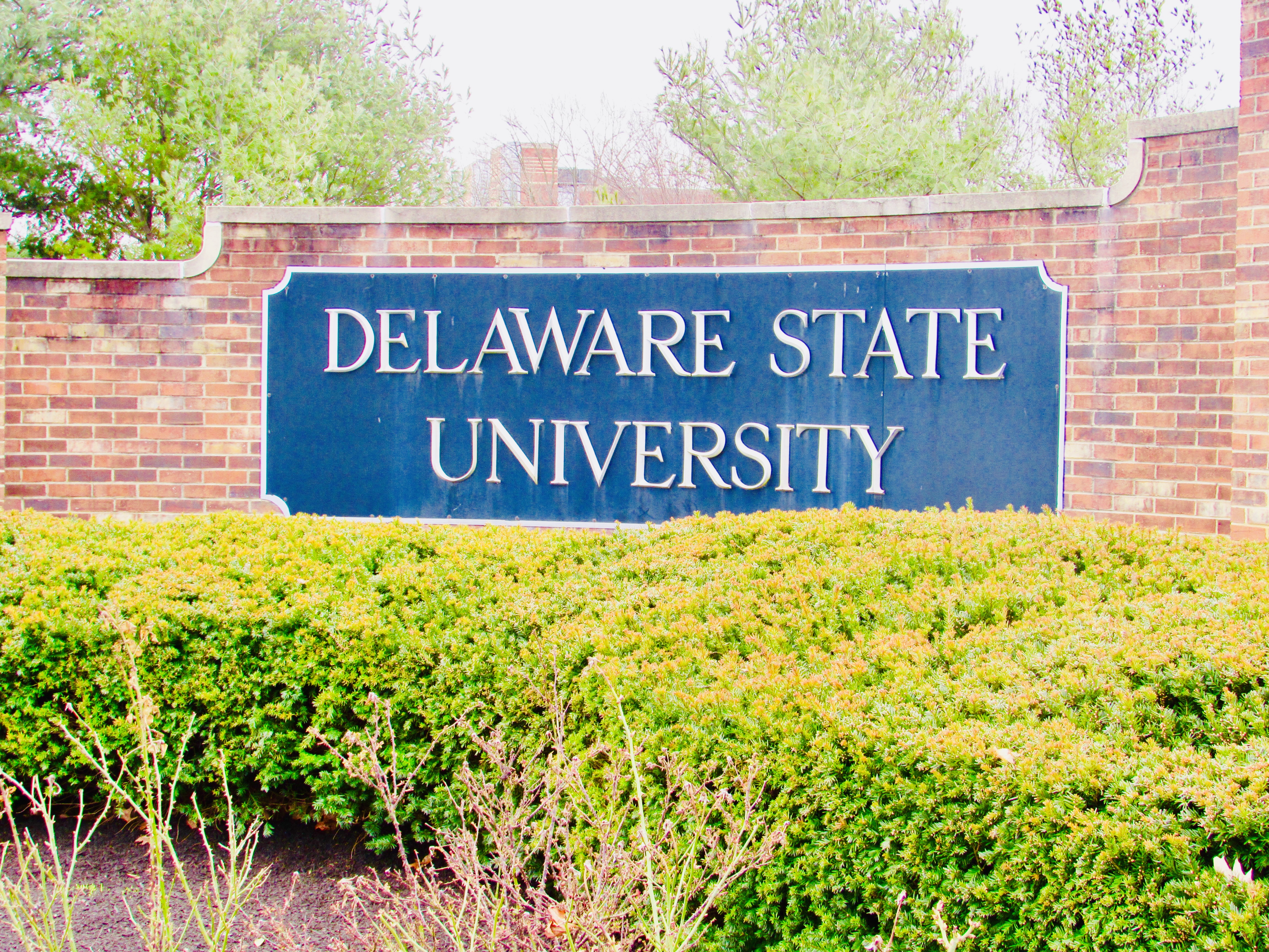 Delaware State Univ. Closes Campus To Public | Delaware Pertaining To Delaware State Spring Break