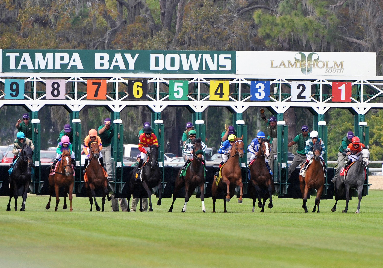 Florida Racing Schedule For Week - Horseracingfla In Tampa Bay Downs Racing Schedule