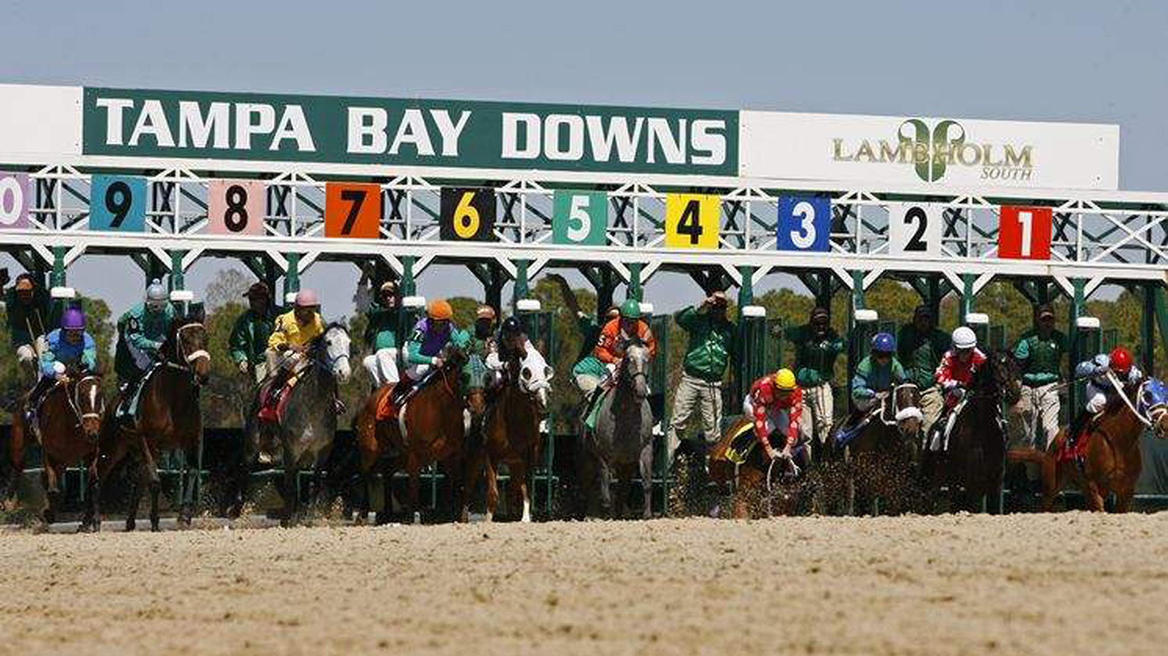 Tampa Bay Downs Closing Races To Fans After This Weekend inside Tampa Bay Downs Racing Schedule