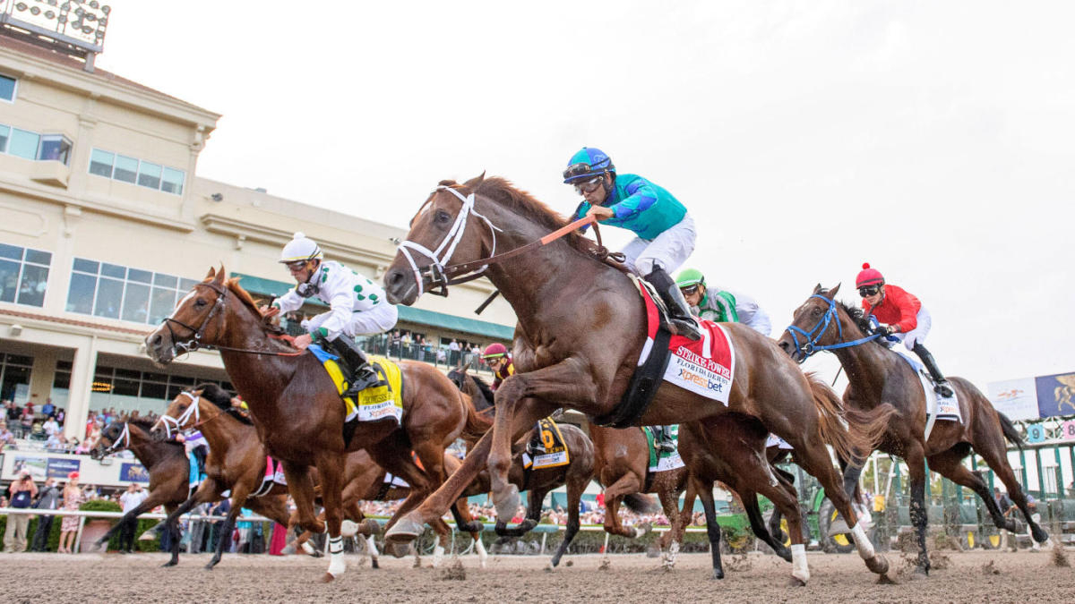 Tampa Bay Downs Pick 5 Odds, Predictions: Handicapping Intended For Tampa Bay Downs Racing Schedule