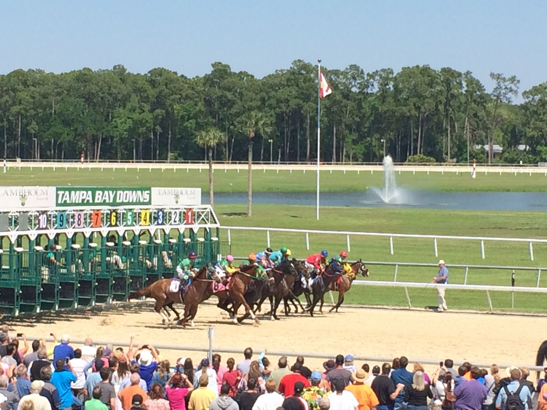 The 2020 Tampa Bay Derby: Analysisgeo Sette – Past The Wire Pertaining To Tampa Bay Downs Racing Schedule