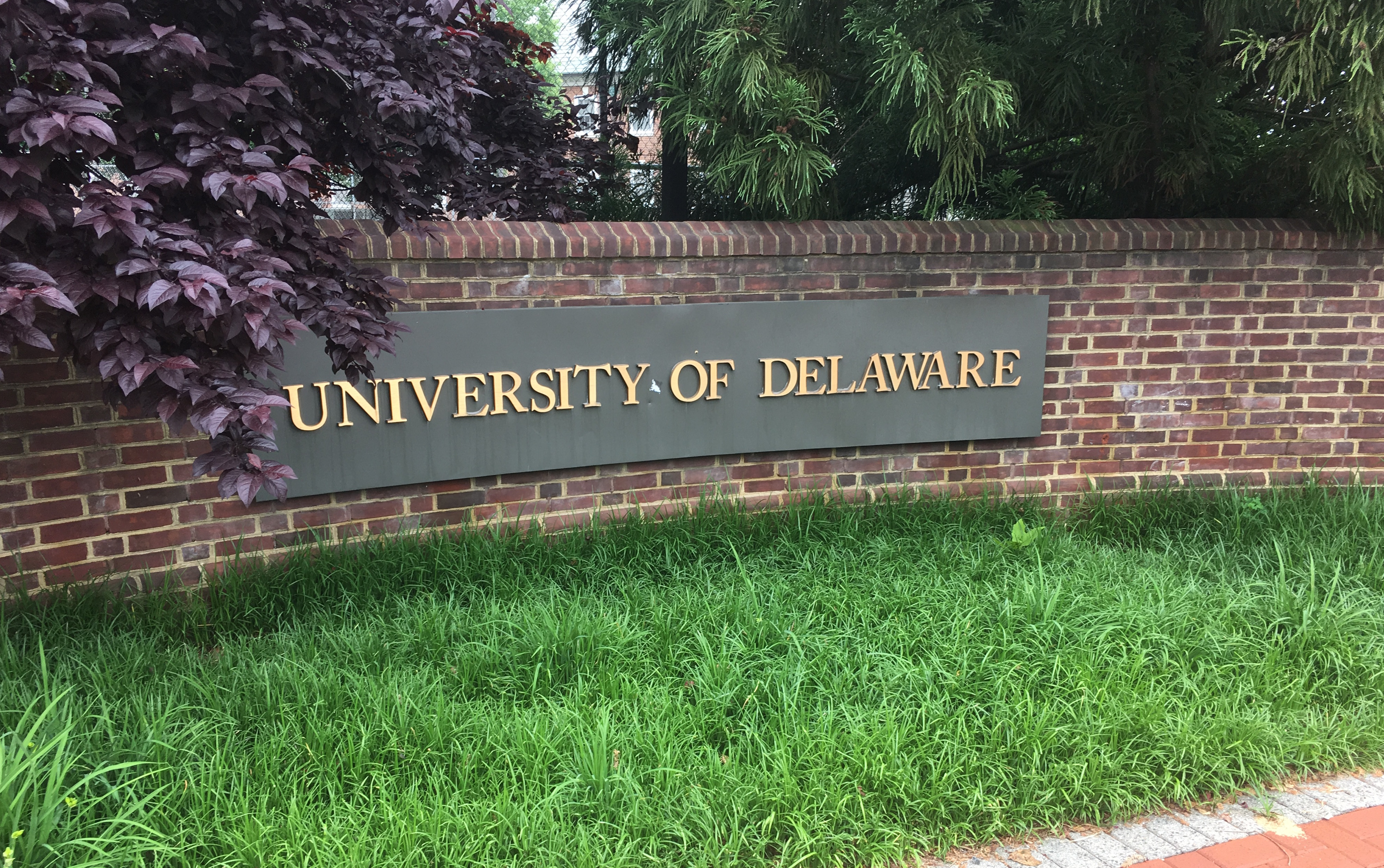 Universities Consider Contingency Plans For Fall Semester Within Delaware State Spring Break