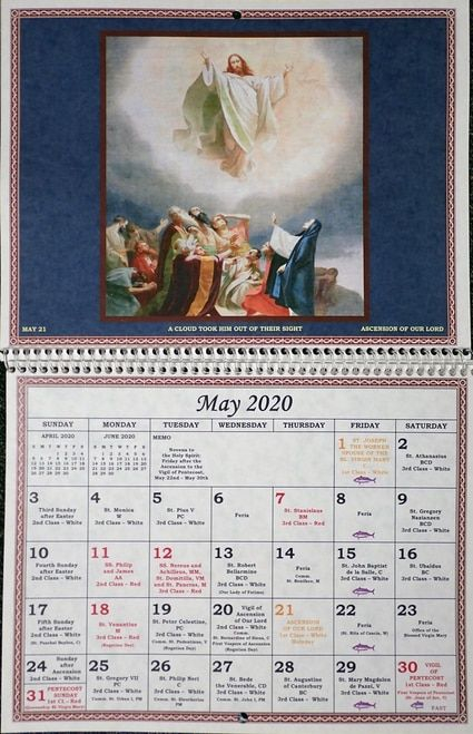 2020 Traditional Liturgical Calendar In 2020 | Catholic For How Many Saints In Saint Of The Day Calendar