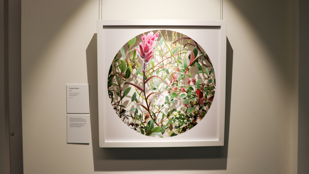 "Becky Comber ""Woodlands"" Art Exhibit Up Until April 27Th Inside College Of Lake County Calendar 2021"