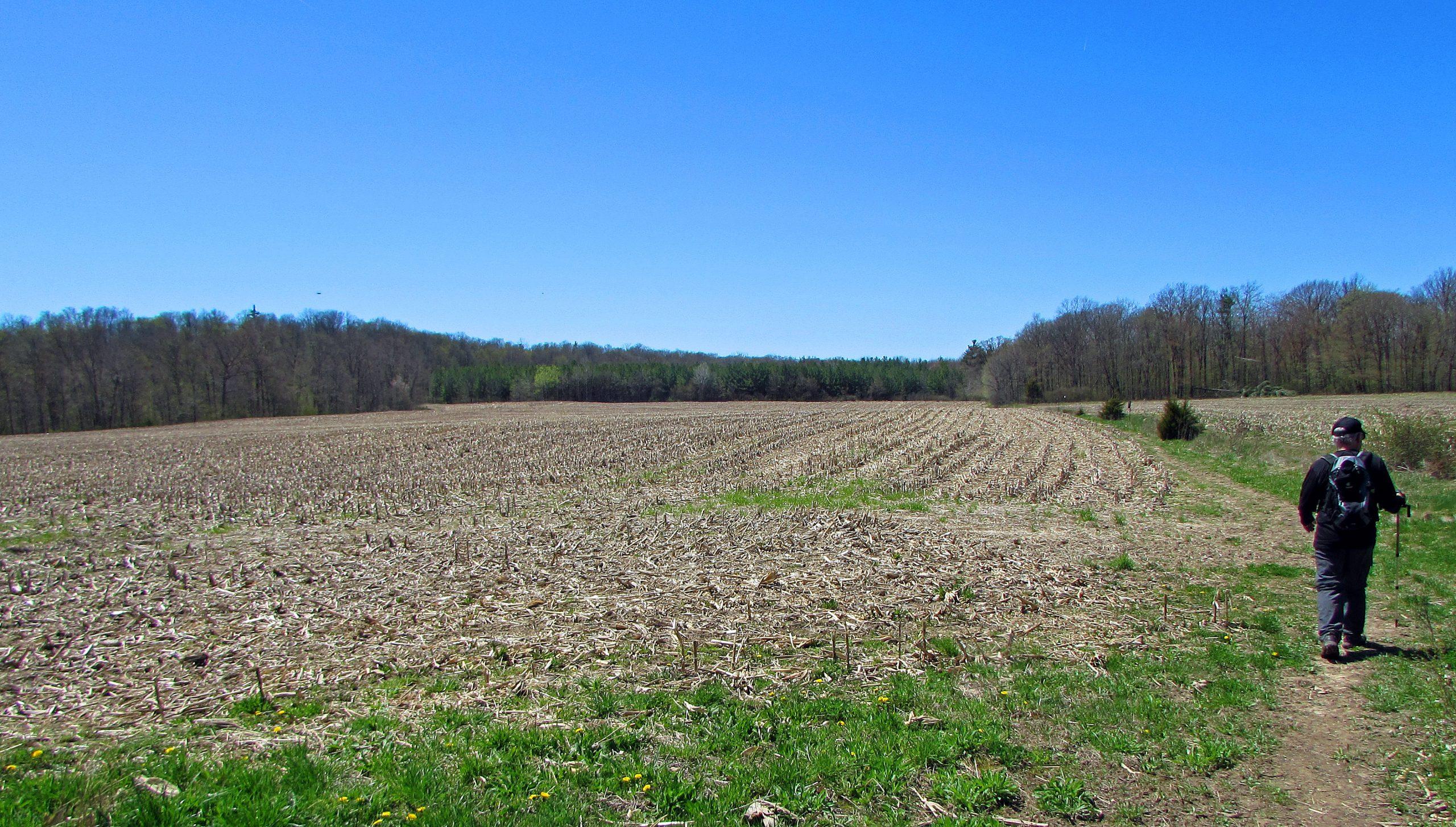 Bruce Trail End To End Part 4 – Holmström Ruddick Intended For Walnut Hills High School Spring Break