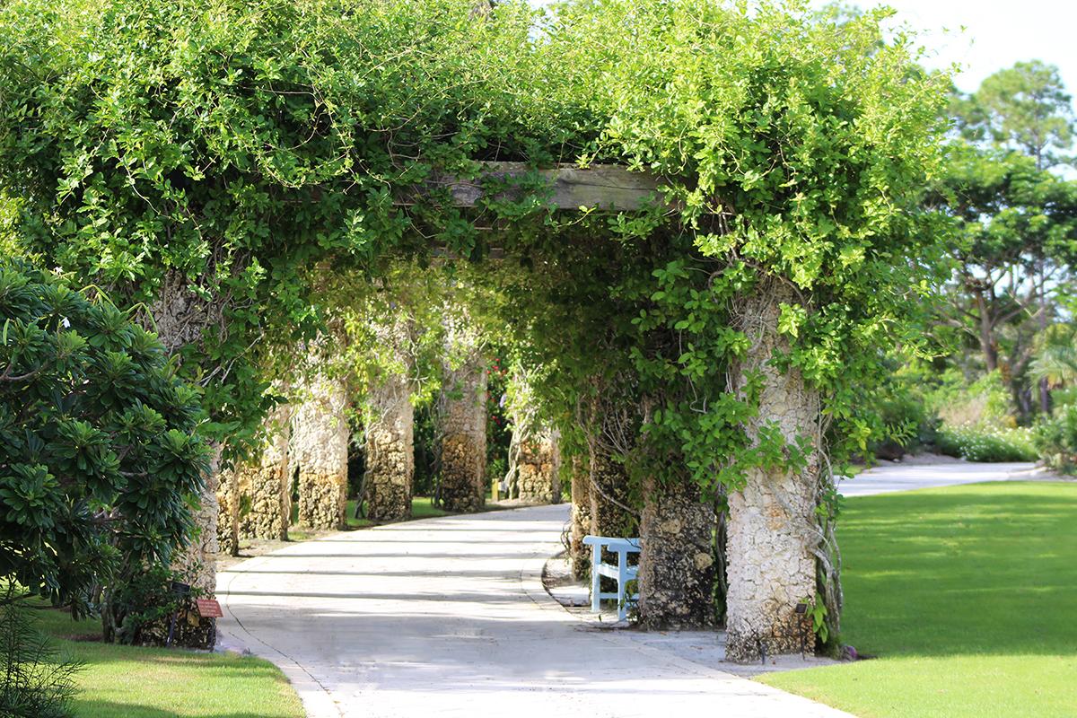 Naples Botanical Garden Calendar | Events, Classes With Regard To Naples Fl Outdoor Concerts