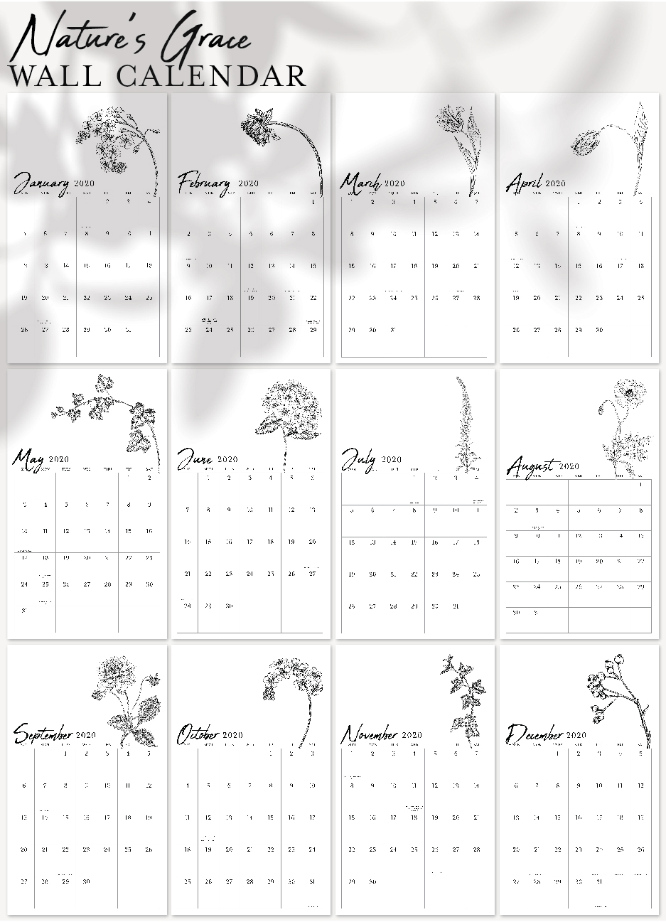Nature'S Awe – Narrow Wall Calendar – The White Orchid Pertaining To How To Create Countdown 2 Year Calendar Starting In April