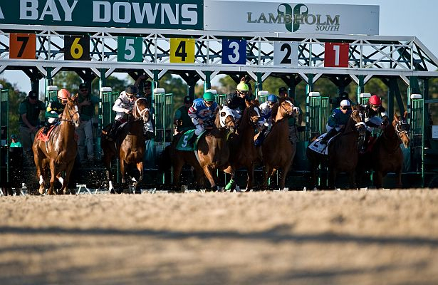 Tampa Bay Downs: Jockey Alderson In Serious But Stable For Tampa Bay Downs Schedule