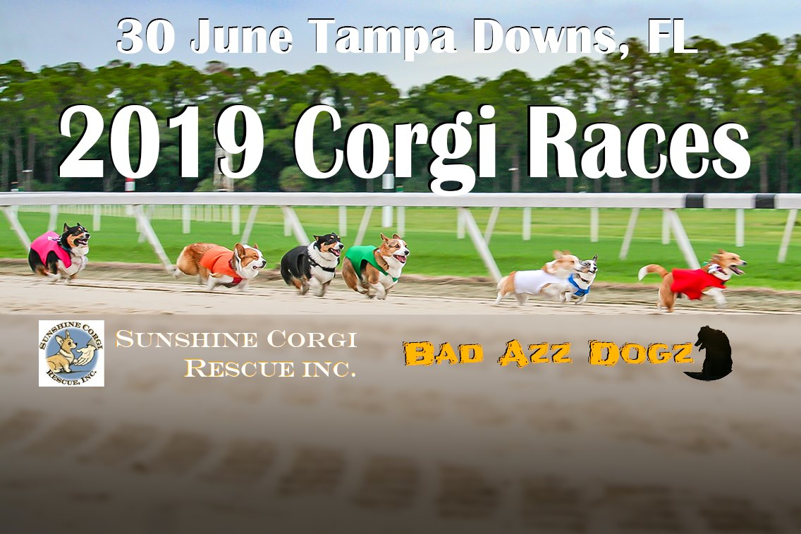Tampa Bay Downs Race Track Calendar | Printable Calendar For Tampa Bay Downs Schedule
