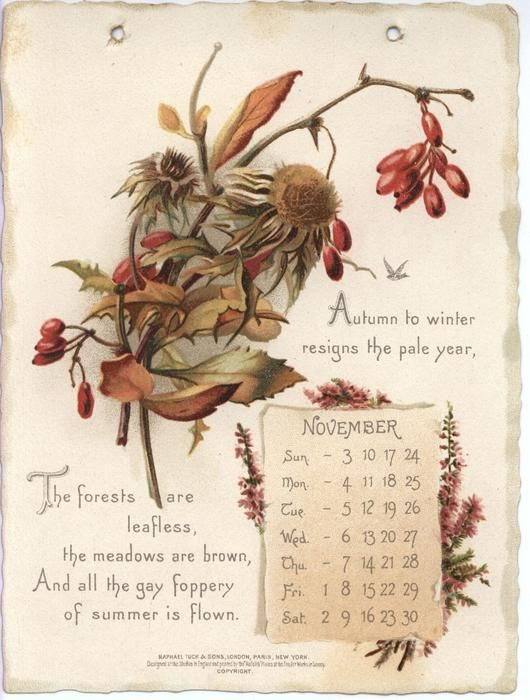 Auld Lang Syne Calendar For 1895 With Quotes From Robert For Jacob Burns Printable Schedule