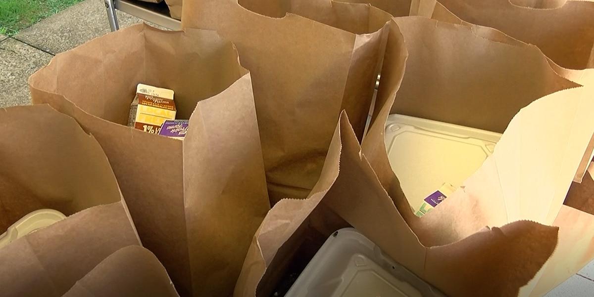 Dorchester District 2 Distributing Meal Packs For Spring Break For When Is Spring Break For Dorchester District 2