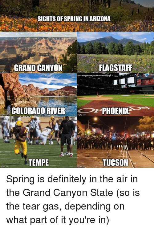 Sights Of Springin Arizona Grand Canyon Flagstaff Colorado Inside University Of Phoenix Break