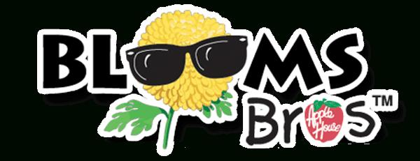 Trees | Terre Haute, In | The Blooms Bros Regarding 2021 Spring Break Schedule Terre Haute